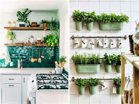 decoraciones  plantas  interiores