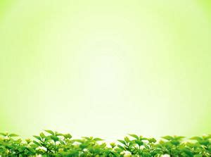background daun hijau background hijau daun 9 background check all