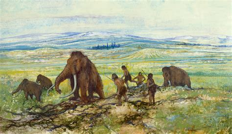 humans will shrink as climate change causes mammal dwarfism extinction of large mammals in the late quaternary age