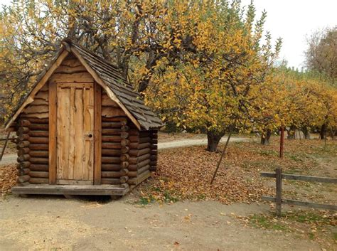 Cabins Orchard by Beautiful Apple Orchard And Small Cabin In The Apple