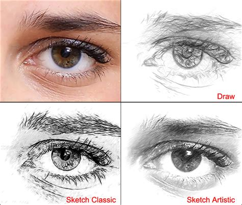 Sketches Exles by Different Styles Of Pencil Drawing Akvis Draw Vs Akvis Sketch
