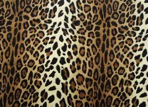 Print A Wallpaper Cheetah Print Hq Wallpapers