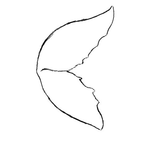 Simple Wing Outline by Simple Wings Drawing Cliparts Co