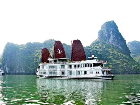 pelican junk boat halong bay pelican cruise and paloma cruise best prices in 2015