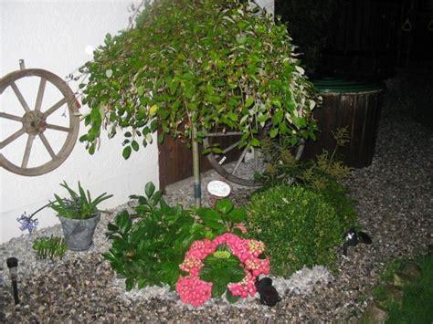 Mein Garten 24 by Garten Mein Garten Mein Wohnzimmer Zimmerschau