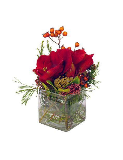 tischdeko pflanzen pflanzen tischdeko amarylis rot