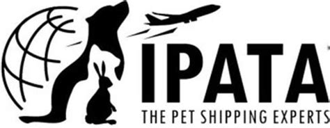 puppy shipping services ipata the pet shipping experts reviews brand information ipata lake ranch