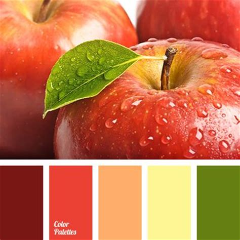 red and green color combination best 25 saturated color ideas on pinterest dark blue