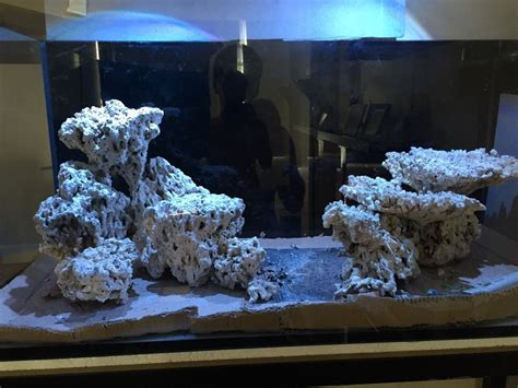 Marine Aquascaping Techniques by Tips And Tricks On Creating Amazing Aquascapes Page 49