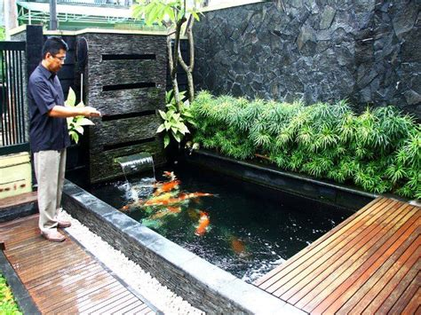 gambar kolam ikan minimalis kolam ikan koi kolam ikan hias  taman kolam home