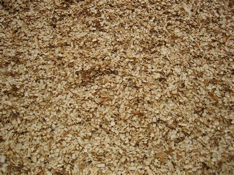 Paper From Woodchips - file woodchips for paper production jpg wikimedia commons