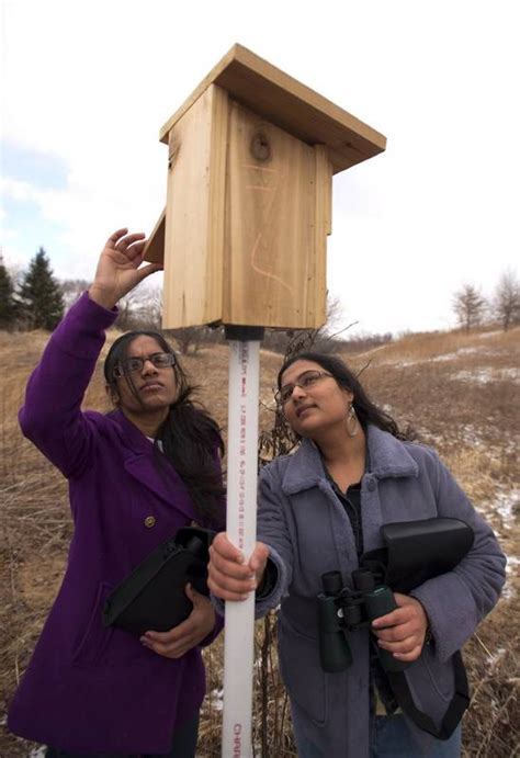 Fvpd Box Behel Gelombang Blue park district issues call for bluebird monitors dailyherald