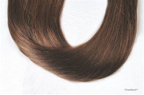 tressmatch hair extensions tressmatch 16 quot 18 quot remy human hair clip in extensions
