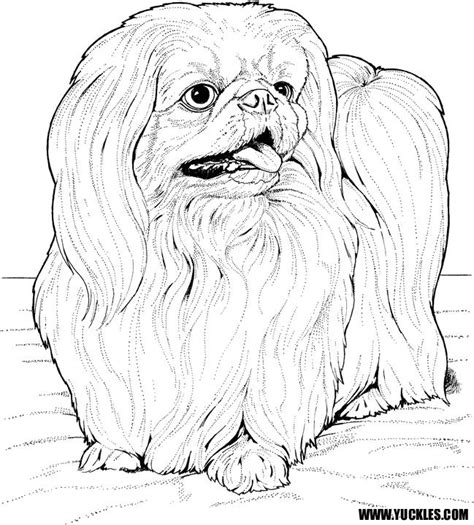 shih tzu puppies coloring pages pekingese coloring page by yuckles