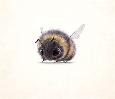 incredibly cute animal illustrations by sydney hanson will