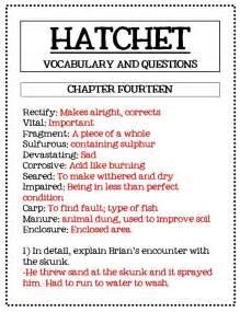 Hatchet Essay Questions by Hatchet
