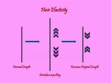 How To Increase Elasticity In Hair | curly wavy hair basics india