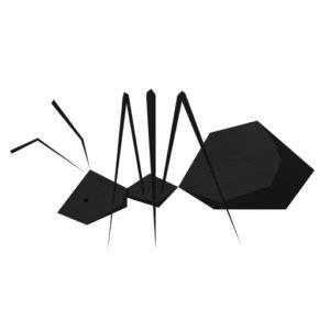 formiche volanti come eliminarle faq mayerbraun
