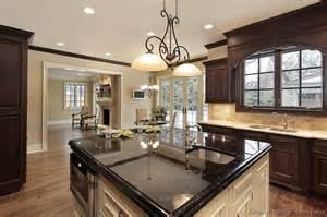 pictures of kitchens traditional dark espresso kitchen