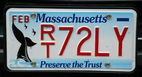 Vanity Plates Ma by Massachusetts License Plate Preserve The Trust Whales