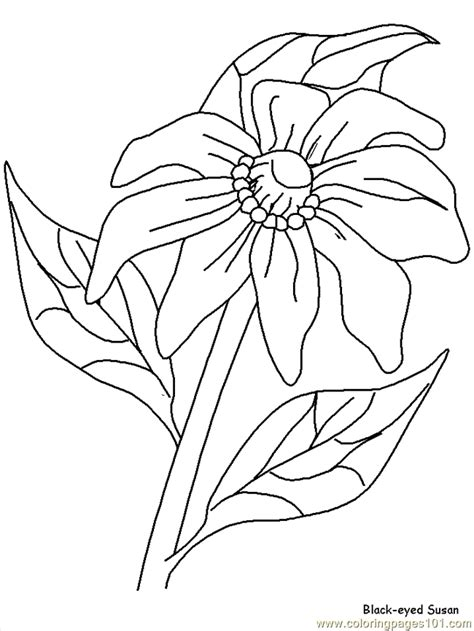 Galerry realistic flower coloring page