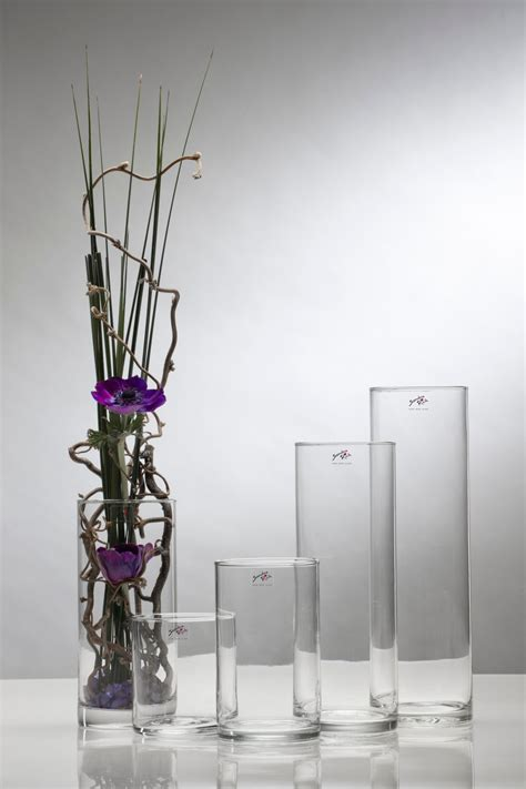 dekorationen aus holz dekorationen hohe glasvase