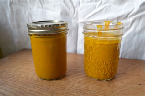 turmeric paste for dogs turmeric golden paste for and joint rescued rollers