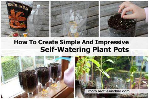why we love self watering planters zerosoil gardens how to create simple and impressive self watering plant pots