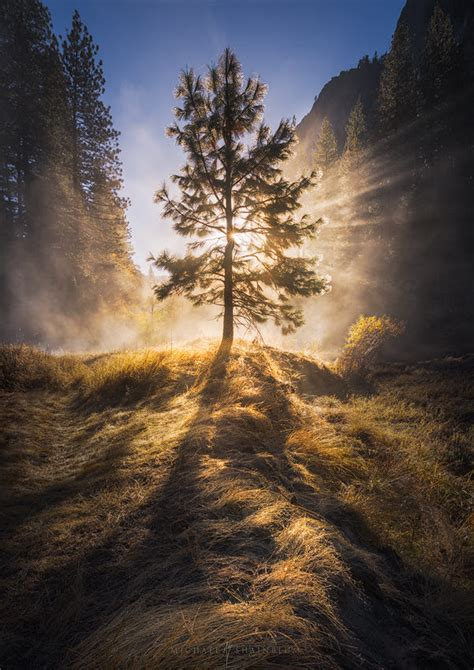 the valley of light the valley of light by michael shainblum photo 91452531