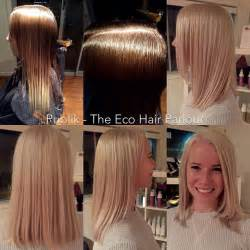 high lift color for hair 17 best images about organic colour systems on