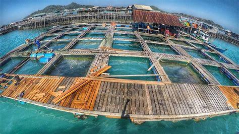Jual Keramba Ikan liputan natuna beruntungnya natuna dibuatkan fasilitas