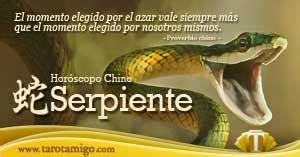 hor scopo chino serpiente tarot y esoterismo hor 243 scopo chino serpiente para hoy caracter 237 sticas y a 241 o
