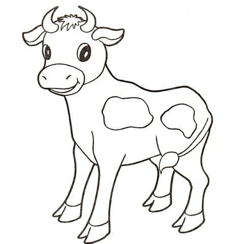 calf coloring cow page 171 free coloring pages