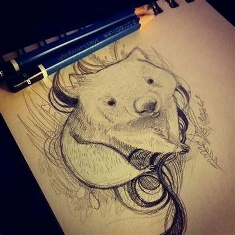 wombat on