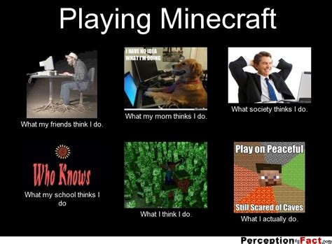 playing minecraft what people think i do what i