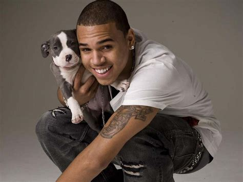 chris dogs chris brown 1600x1200 wallpapers 1600x1200 wallpapers pictures free