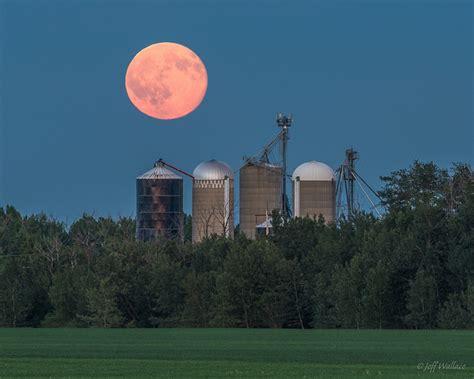 the full strawberry moon of june flickr photo sharing summer solstice strawberry moon photos artnet news