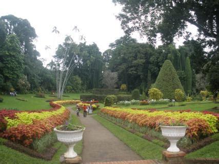 Botanical Gardens Kolkata Reviews Ticket Price Address Botanical Gardens