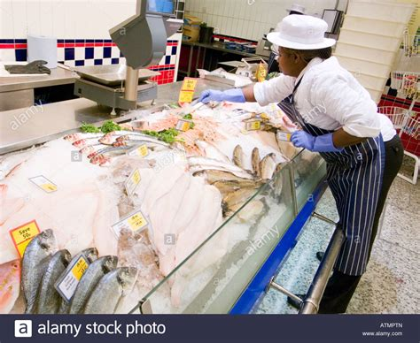 Hiller Plumbing Clarksville by Fresh Fish Counter Stock Photos 28 Images Fresh Sea