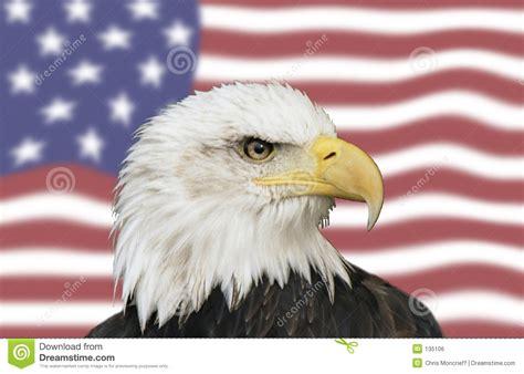 american symbols royalty  stock image image