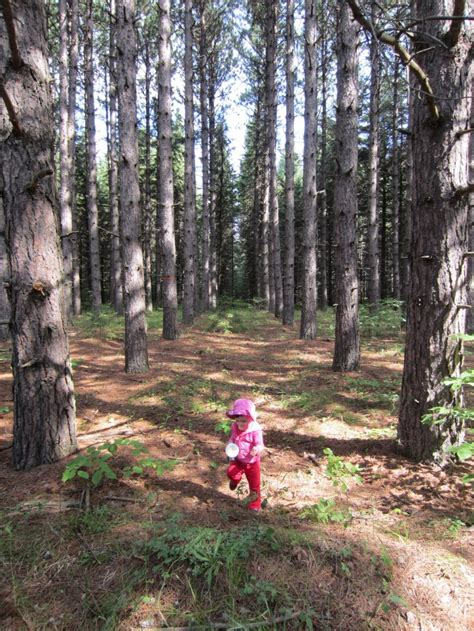 legend boats thunder bay 6 family friendly hikes near thunder bay northern