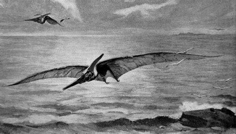 nama film dinosaurus naga di film avatar jadi nama dinosaurus terbang kaskus