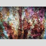 Spring Flower Backgrounds | 640 x 452 jpeg 214kB
