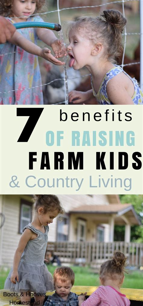 7 of the most liberating benefits of homesteading from desk jockey to survival junkie 3480 best the homestead survival images on canning garden and health