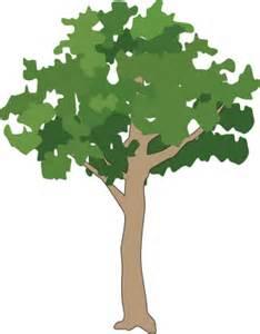 Tree Symbol Generic Tree Rainforest 1 Trees Shrubs Vines Vector