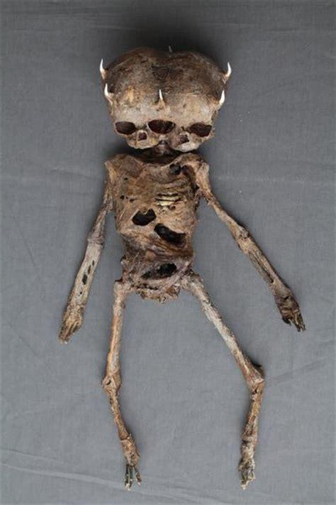 mummified demon baby dapper cadaver props