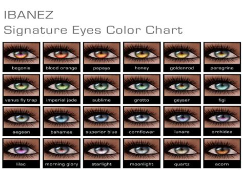 exotic color names 8 best images of rare eyes chart eye color chart with