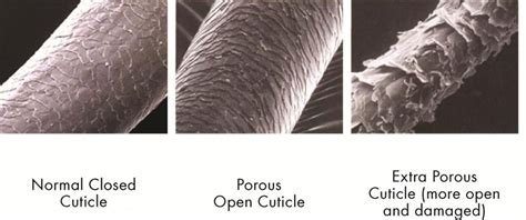 Open Tge Cuticle And Detox by What Are The Benefits Of Ceramic Technology