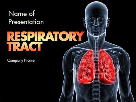 powerpoint themes lungs respiratory care presentation template for powerpoint and
