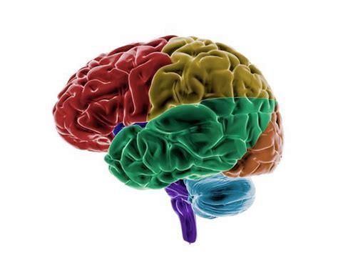 mal di testa tumore cervello tumore al cervello i possibili sintomi non mal di